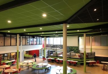 Eurocoustic plafondpanelen, type Tonga, afm. 600 x 600 mm met in kleur gespoten raster