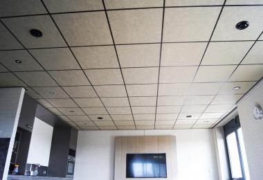 Rockfon plafondpanelen, type Gold, afm. 600 x 600 mm met 15 mm zwart microlook systeem